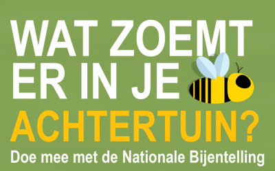 Nationale bijenteldagen